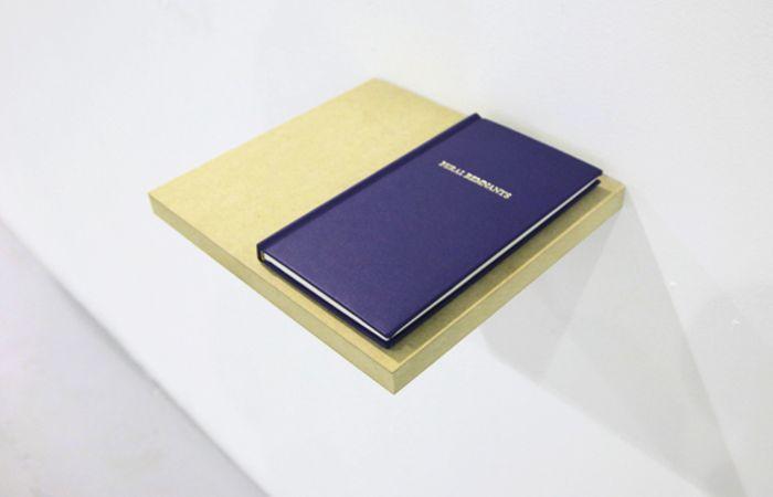Feral Remnants, 2012, Book, 80p., 21x10,5cm, ed.30
