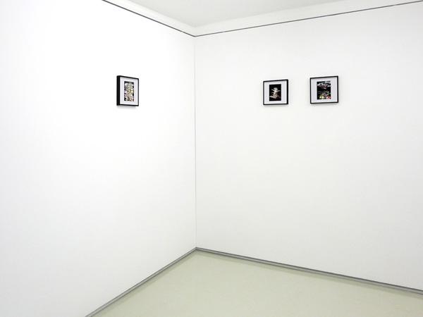 Liquid Logo Series, 2014, C-Print On Fujifilm Paper, Installation view