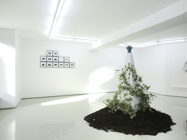 Manolis D. Lemos, Feral Remnants/Oinousses, 2013, Installation view