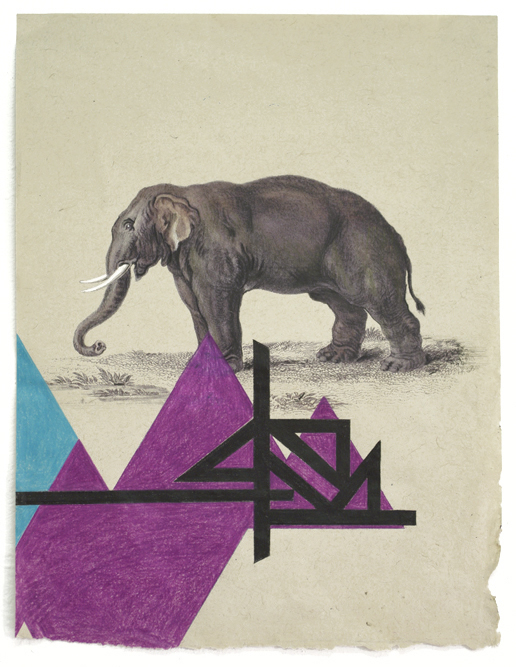 Versaweiss / Elephs2 / Print and colored pencils on handmade paper, 42x32cm, ed. of 10