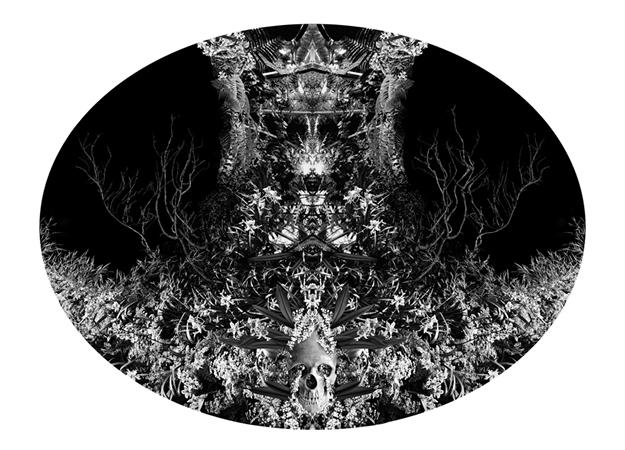 Katherine Vafias, Insensate, 2012, digital print, 40x30cm, ed.