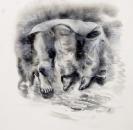 Marianna Ignataki, Nest II, 2016, watercolor, pencil, colored pencil and pastel on paper, 39x37cm