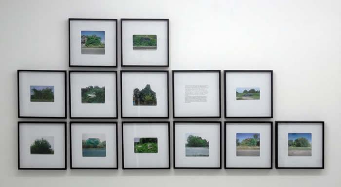Manolis D. Lemos, Feral Remnants, 2012, 14 framed digital prints on paper, 23 x 23cm each & vinyl printed text