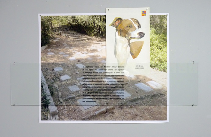Manolis D. Lemos, Athens College Dog Cemetery, 2013, digital print on glass, oil on canvas, digital print on paper, photocopies on plain paper, variable dimensions