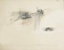 Dimitris Condos, Rain, Rome 1961, Graphite and color pencils on paper, 50x70cm