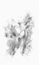 Konstantinos Fazos, Untitled, 2016, pencil on paper, 91x56,5cm