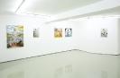 Konstantinos Ladianos, 2015 Solo Show, Installation View