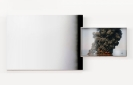 Not Yet Titled (Oil Spill Fire), 2016, Acrylic Spray Paint On Canvas, Inkjet  Print On Fine Art Paper and Aluminum Frame, 128x280cm