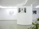 Manolis D. Lemos, Feral Remnants/Oinousses, 2013, Installation view