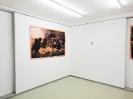 Maro Fasouli, Picnic in North Korea, Installation View  Courtesy of CAN Christina Androulidaki gallery and the artist